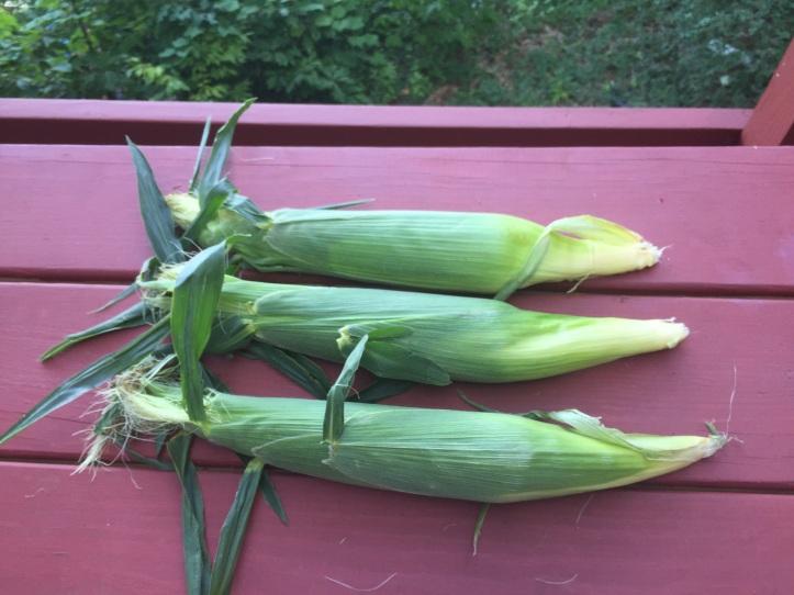 grill_corn2_laborday.jpeg